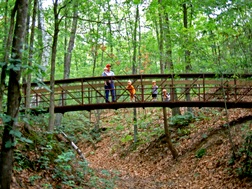 Hiking across a bridge at Village Creek State Park
