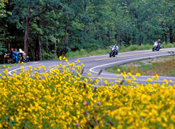 Mount Magazine Motorcycles and Flowers