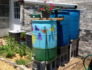 Examples of rain barrels in use in a backyard setting